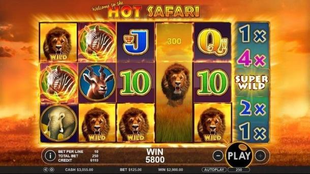 hot-safari.jpg