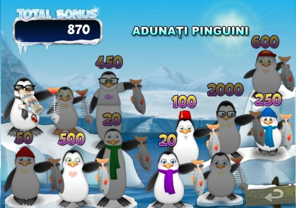 bonus-icy.jpg