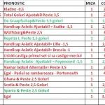 ponturi-nichis-februarie-2013-1