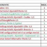 ponturi-nichis-februarie-2013-2