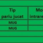 jurnal-mug-7