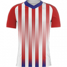 Logo Atletico Madrid Women