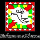 Logo Obearagon Huesca