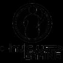 Logo Invictus Gaming