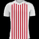Logo Sportivo San Lorenzo