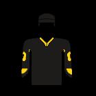 Logo Stavanger Oilers