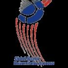Logo CSU Suceava