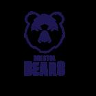 Logo Bristol Bears