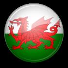 Logo Țara Galilor