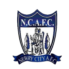 Logo Newry City