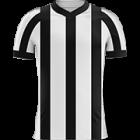 Logo Botafogo SP