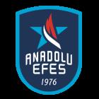 Logo Anadolu Efes