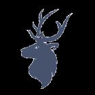 Logo triumph gaming