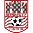 Logo Dergview