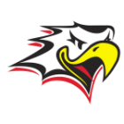 Logo Vaasan Sport
