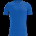 Logo Dinamo Moscova Volei