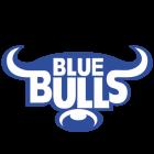 Logo Bulls
