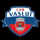 Logo CSM Vaslui