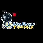 Logo Imoco Volley Conegliano