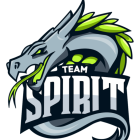 Logo Team Spirit