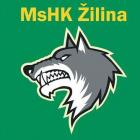 Logo Zilina HC