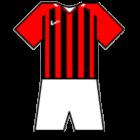 Logo Belshina
