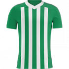 Logo Atletico Nacional