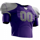 Logo Minnesota Vikings