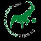 Logo Celje Lasko