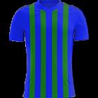 Logo Caykur Rizespor